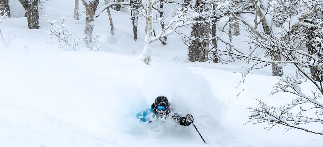 Niseko-Otaru Image Quest Powder Ski Tour