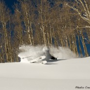 Jeff Robertson Colorado Aspen Trees Powder Skiing, Le Grand Adventure Tours. Photo Credit: Hank DeVre'