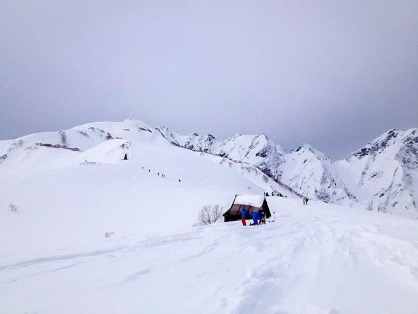 Backcountry Skiing on our Japan Ski Trip