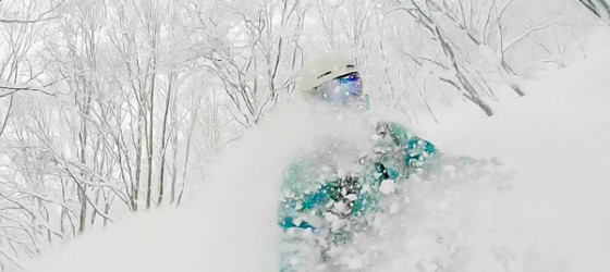 Japanuary in Japan. Plenty of powder in the trees