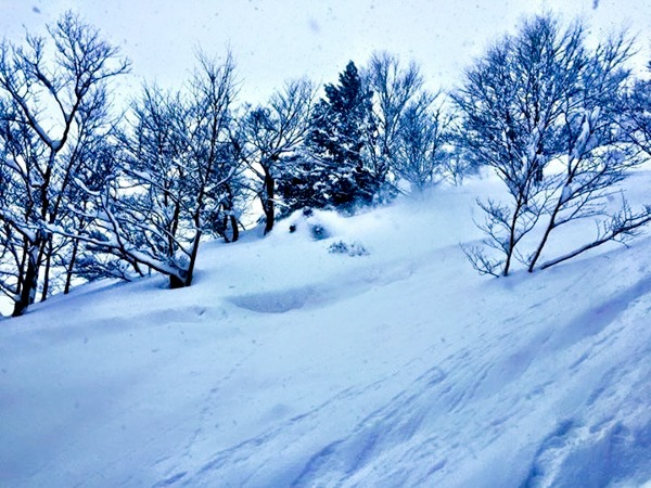 Japanuary in Japan. Yes, it gets that deep! Can You Spot the Skier