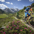 Mountain Bike Switzerland Tour