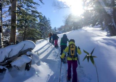 LGA-Japan-Ski-Trip-20