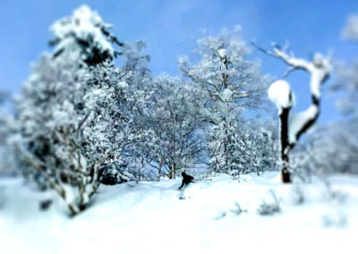 LGA-Japan-Ski-Trip-34