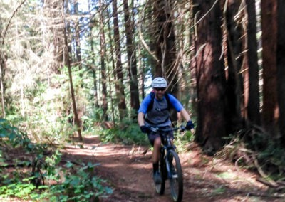Santa Cruz Mountain Bike Tour - Le Grand Adventure Tours