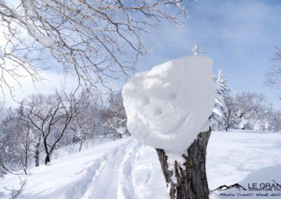 LGA-Niseko-Japan-Ski-Trip-Hank-Devre-18