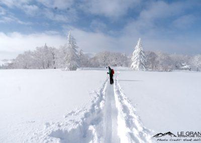 LGA-Niseko-Japan-Ski-Trip-Hank-Devre-19
