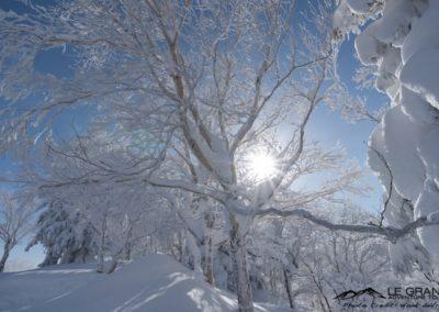 LGA-Niseko-Japan-Ski-Trip-Hank-Devre-20