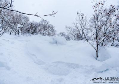 LGA-Niseko-Japan-Ski-Trip-Hank-Devre-21