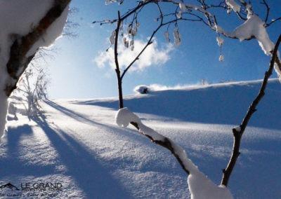 LGATours-japan-ski-trip-tom-winter-16